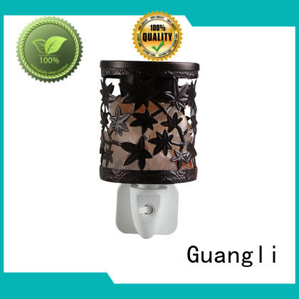 Guangli Best himalayan night light factory for Air Purifying