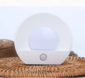 USB Rechargeable Motion Sensor night light LED light white and warm white with duck to dawn motion sensor